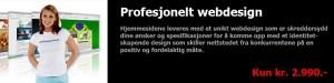 Nye hjemmesider med et profesjonelt web design